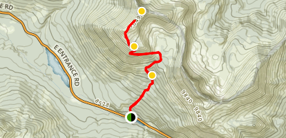 Avalanche Peak Trail Map