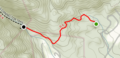Palmetto Trail to Falls Map