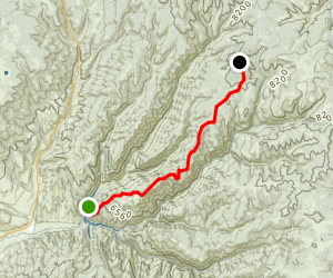 Baldy Ridge Trail Map