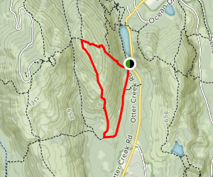 Dorr Mountain Cannon Brook Loop Trail Map