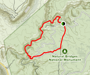 Sipapu Bridge to Kachina Bridge Loop Map