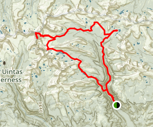 Uinta River Trailhead Loop Map