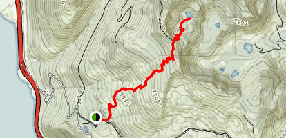 Margaret Lake Trail Map