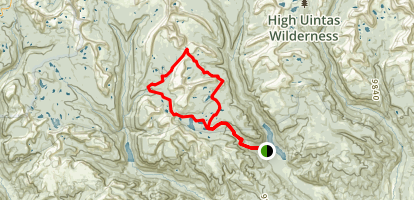 Brown Duck Mountain Loop Trail Map