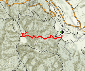 Mount Wittenberg Trail Map
