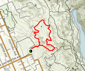 Harvey Bear Trail Map