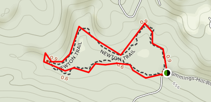 Walter/Newton Natural Area Trail Map