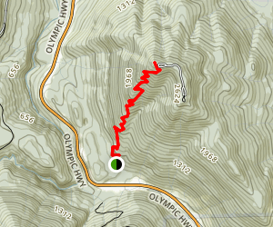 Mt. Walker Trail Map