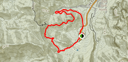 Upper and Lower Bristlecone Loop Map