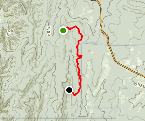 Mars Court, Cibola National Forest Map