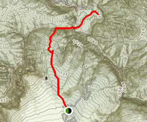 Mount Kaala Trail Map
