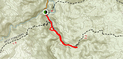 Palm Canyon Trail Map