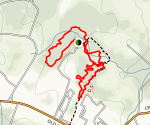 Ringtail Ridge Trail Map