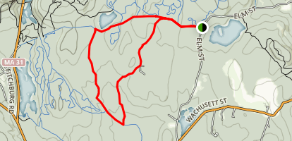 Leominster State Forest Trail: Elm St. Map