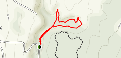 Rough Horsetail Nature Trail Map