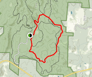Supertree Trail Map