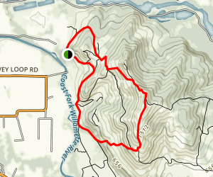Mount Pisgah Outer Loop Trail Map