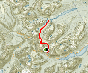 Piegan Pass Trail Map