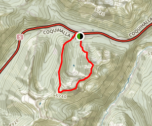 Needle Peak Trail Map