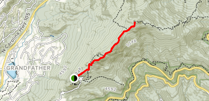 Grandfather Mountain Trail Map