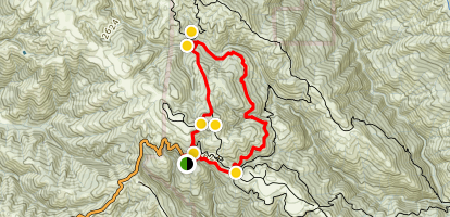Frog Lake Loop Trail Map