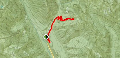 Carne Mountain Trail Map