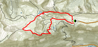 Sunrise Rim Trail Map