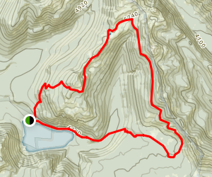 Cispus Pass Loop Trail Map