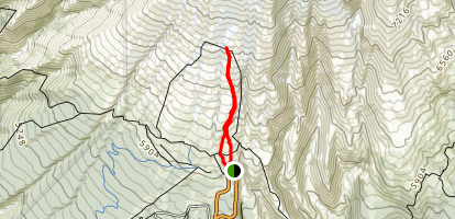 Silcox Hut Trail Map