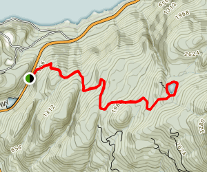 Petgill Lake Trail Map