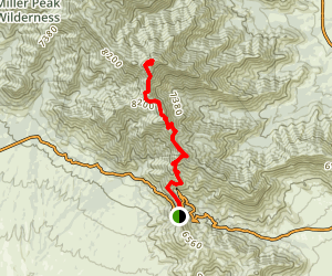 Miller Peak Trail Map