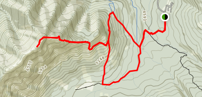 Wind Ridge Trail Map