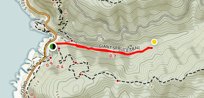 Giant Spruce Trail Map