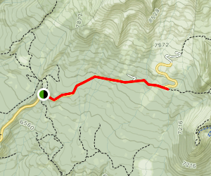 Bunny Flat to Panther Meadow Map