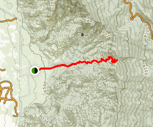 Pino Trail Map