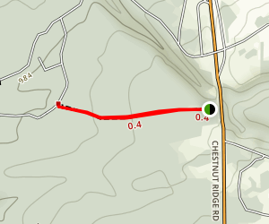 Out & Back at Chesnut Ridge Trail Map