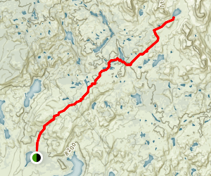 Timico Lake Trail Map