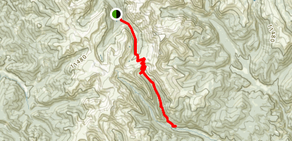 Webster and Red Cone Pass Trail Map