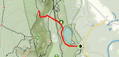 Cathedral Ledge Trail Map