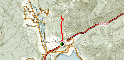 Ptarmigan Trail Map
