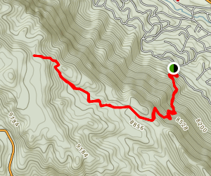 Mt. Esther Trail Map