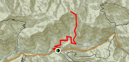 Burch Hollow Trail Map