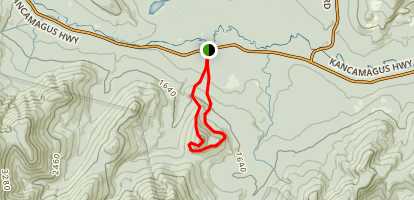 UNH Trail to Hedgehog Mountain Map