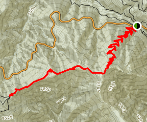 Vincent Gap to Mt. Baden-Powell Trail Map