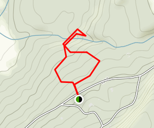 Stevens Glen Trail Map