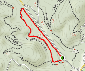 Forest Service Fitness Trail Map