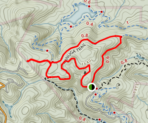 Firetower, Kanuga and Brissy Ridge Loop Map