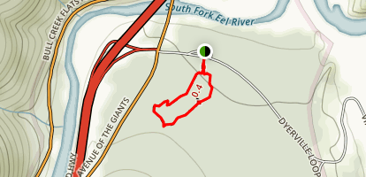 Founders Grove Nature Trail Map