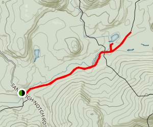 Guinea Pond Trail Map