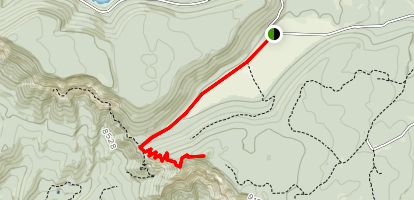 Virgin River Rim Trail Map